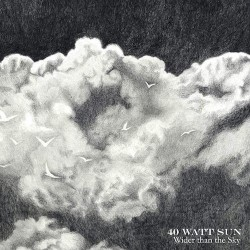 40 WATT SUN. Wider Than The Sky. 2LP