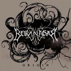 BORKNAGAR. Origin LP