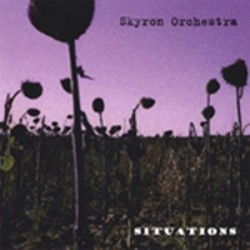 SKYRON ORCHESTRA. Situations CD